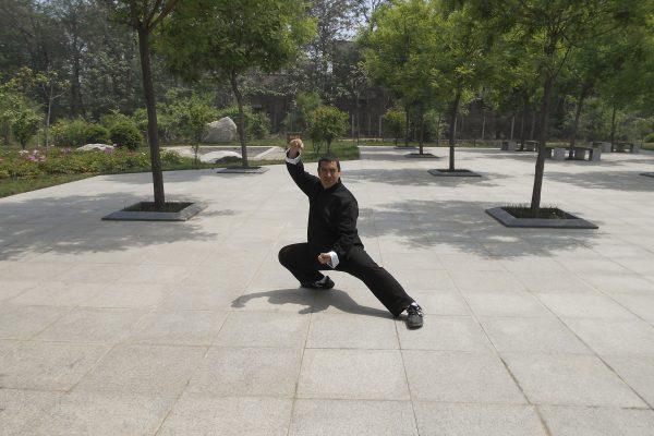 Postura taijiquan