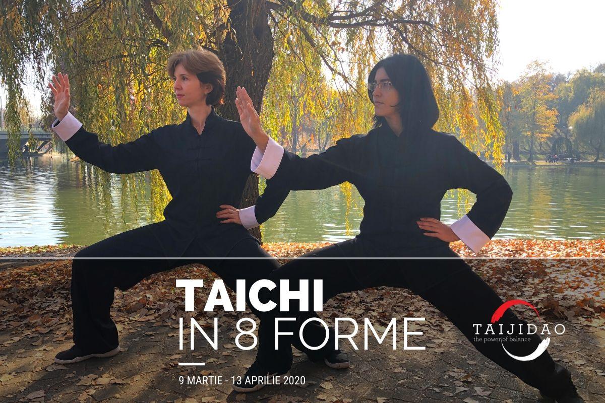 stagiu-taichi3